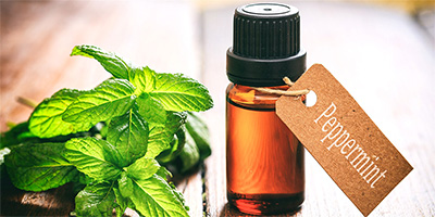 Peppermint oil uses and benefits to try now for beauty, health and home
